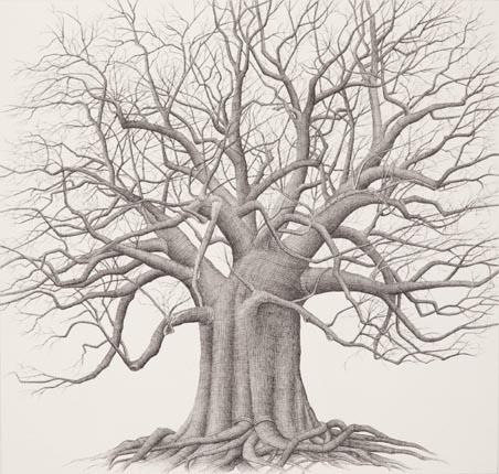 tree_11a